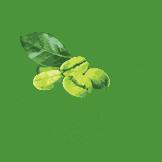 logo-ca-phe-xanh